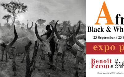 Expo Benoît Feron